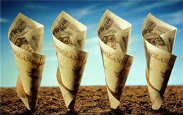下半年理财市场走势预测